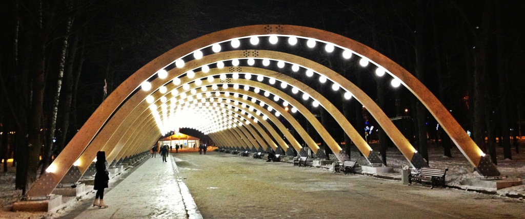 65456a62 парк Сокольники 2015 - 2016 Sokolniki каток в Москве, 107113 ...